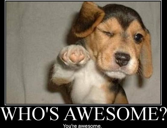 Who is Awesome?